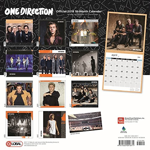 One Direction 2018 Wall Calendar Photo #3