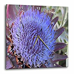 3dRose TDSwhite – Summer Seasonal Nature Photos - Floral Purple Artichoke Flower - 15x15 Wall Clock (dpp_284512_3)