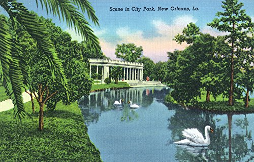 New Orleans, Louisiana - Scenic View of Swans at City Park (12x18 SIGNED Print Master Art Print w/ Certificate of Authenticity - Wall Decor Travel Poster)