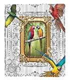 Chaoran 1 Fleece Blanket on Amazon Super Silky Soft All Season Super Plush Paintings Parrots Vintage Mirror Framed Art Paintings Decor Ideas French Country Design Home Hmade Drawing Effect Baroque Orn