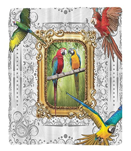 Chaoran 1 Fleece Blanket on Amazon Super Silky Soft All Season Super Plush Paintings Parrots Vintage Mirror Framed Art Paintings Decor Ideas French Country Design Home Hmade Drawing Effect Baroque Orn by