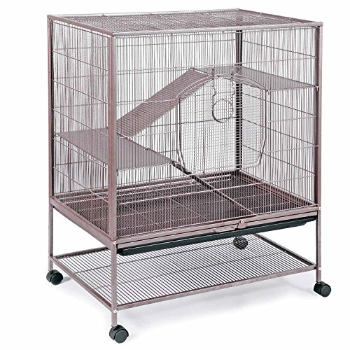 prevue-pet-products-rat-and-chinchilla-cage-495-earthtone-dusted-rose-31-inch-by-20-1-2-inch-by-40-i
