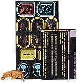 Star Trek Attack Wing: Nistrim Raider Expansion Pack