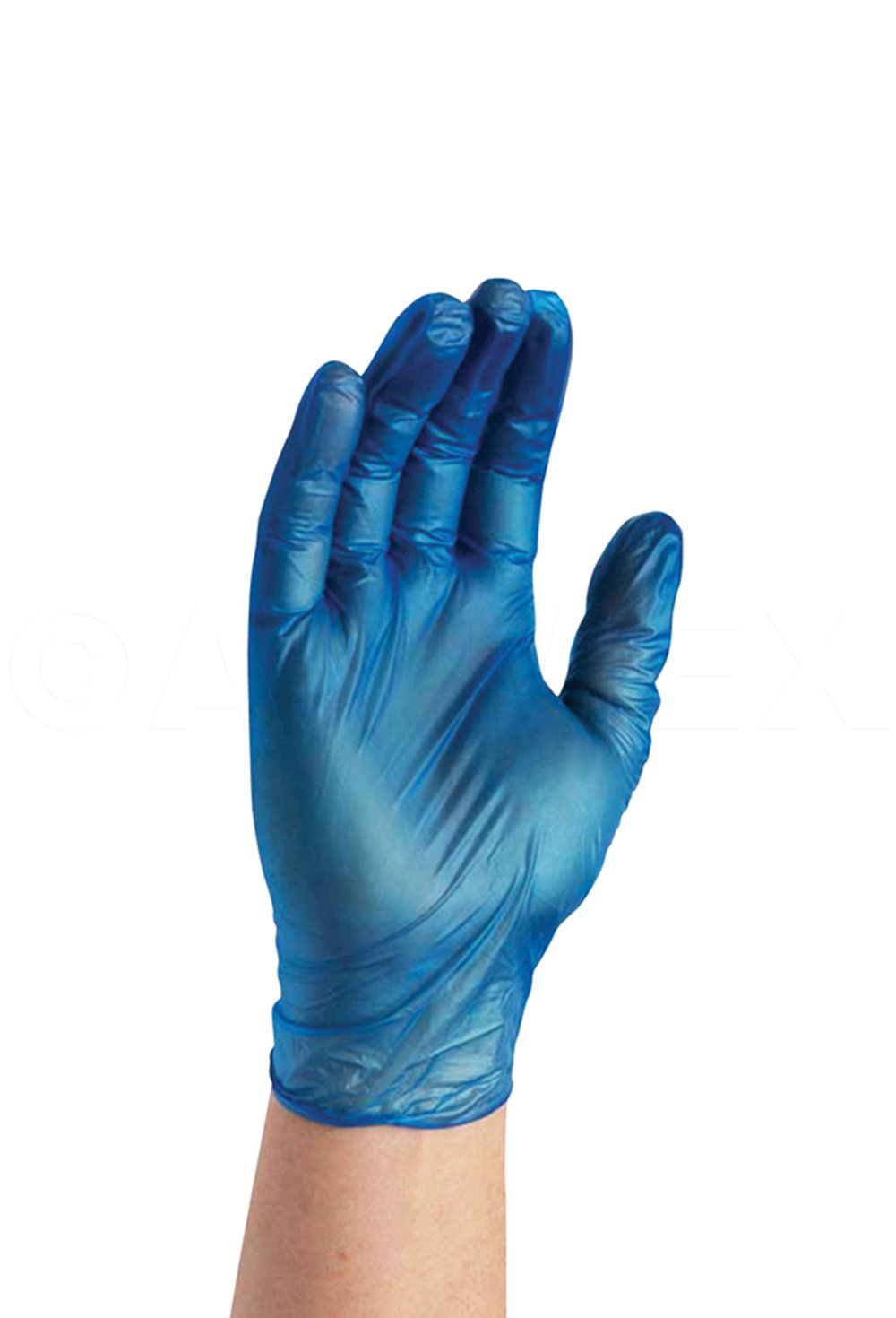 AMMEX - IVBPF46100 - Vinyl Gloves - GlovePlus - Disposable, Powder Free, Non-Sterile, 4 mil, Large, Blue (Case of 1000) by Ammex (Image #2)