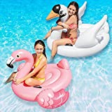 Intex Swan and Flamingo Ride-On Swimming Pool Floats Combo Pack