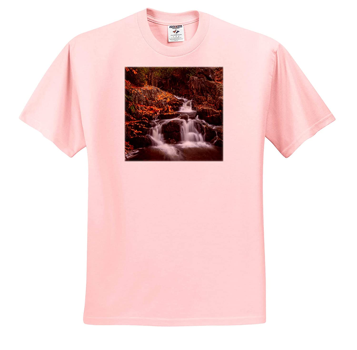 Autumn Leaves on Rocks ts/_317150 3dRose Mike Swindle Photography Landscapes Adult T-Shirt XL