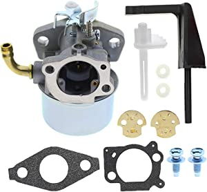 MOTOALL Carburetor Air Filter Fuel Hose For Briggs & Stratton Craftsman Tiller Intek 190 6 HP 206 5.5hp Engine Motor Generator