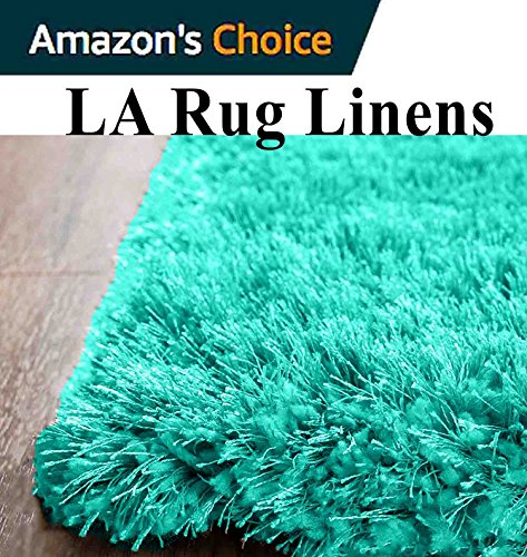 aqua colored rug - 2