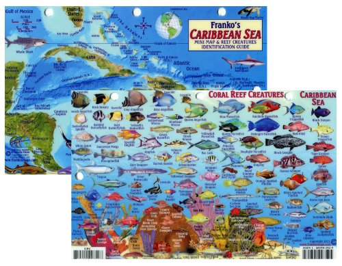 Caribbean Sea Fish Id Card with Island Map 8.5 in by 5.5 in