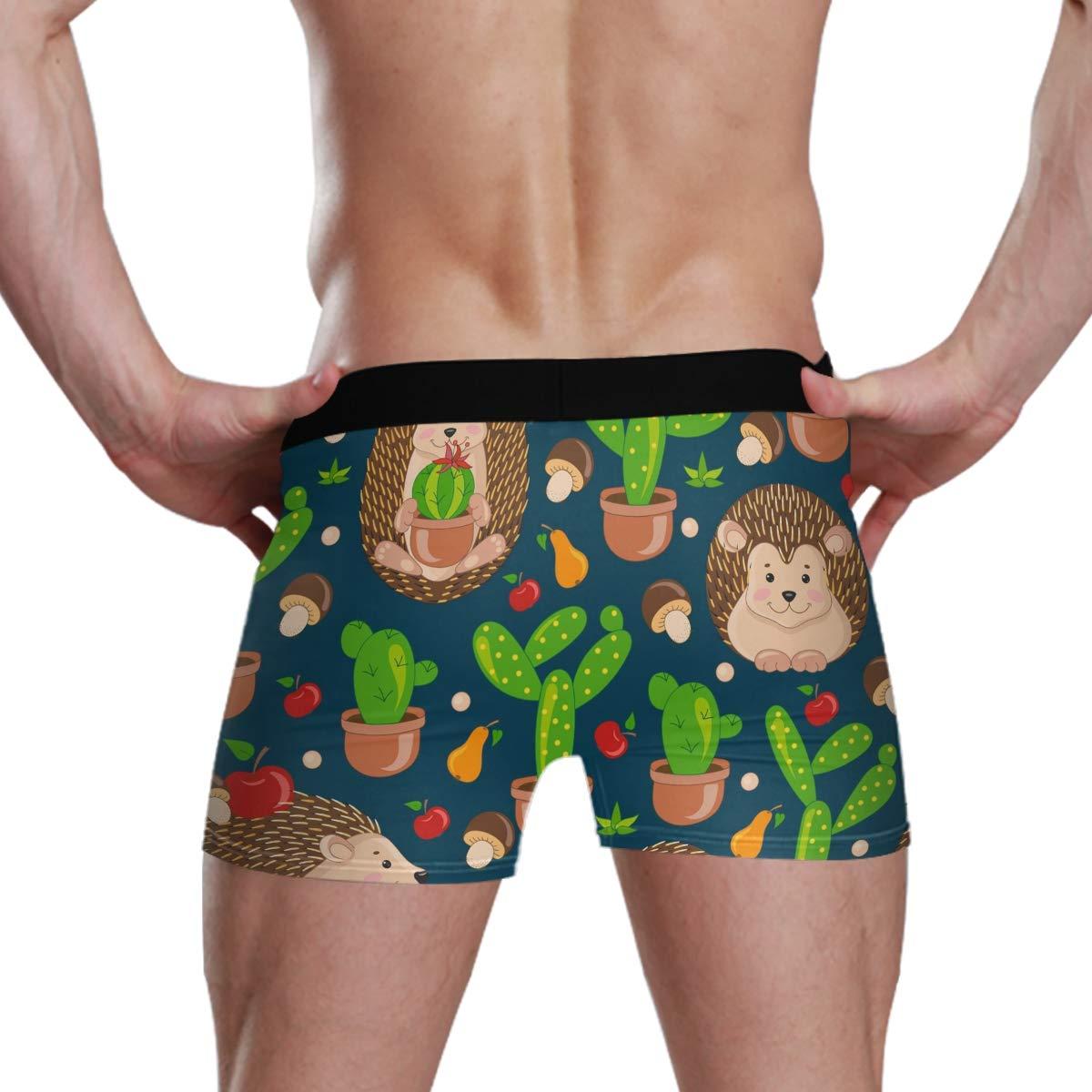 Unisa Mens Exotic Boxer Briefs Comfortable Soft Underwear Boyshorts Underwear for Men Cartoon Hedgehogs