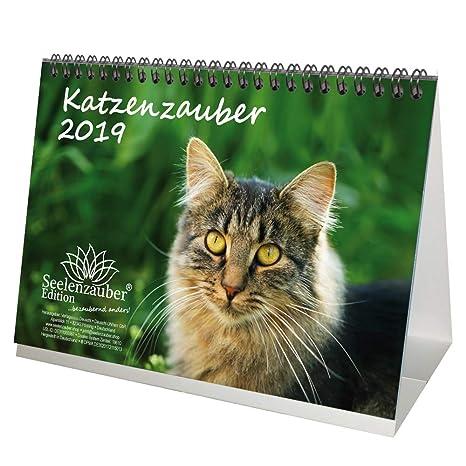 Gato mágica · DIN A5 · Premium mesa/Calendario 2019 · Gatos · Set de