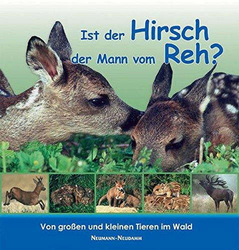 Ist der Hirsch der Mann vom Reh?: Von großen und kleinen Tieren im Wald