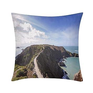 Amazon.com: Funda de almohada hipoalergénica para sofá ...