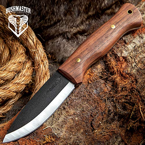 Bushmaster Bushcraft Explorer Fixed Blade Knife,  1095 Carbon Steel Blade, Zebra Wood Handle, Brass Pins and Lanyard Hole, Length 9 5/8 Inch