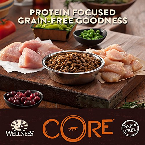 Wellness-CORE-Natural-Grain-Free-Dry-Indoor-Cat-Food-Chicken-Turkey-12-Pound-Bag