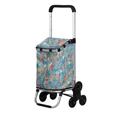 Amazon.com: SNUA Shopping Trolleys,Carro de compras Scooter ...
