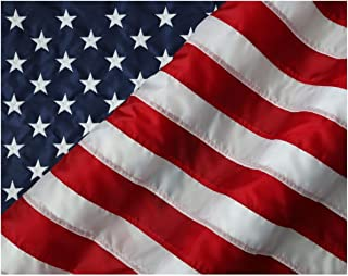 product image for American Flag & Pole Co. 20x30 ft American Flag, Nylon US Flag - Appliqued Stars and Sewn Stripes - Made in The USA