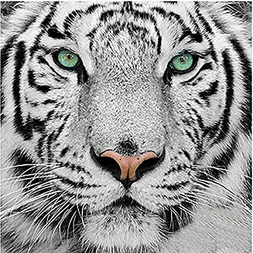 (FAVOT 5D Diamond Painting, Black and White Radical Tiger Full Diamond DIY Rhinestone Canvas Art Painting Home Living Room Wall Sticker (30X30, Aggressive Tiger))