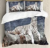 Tiger Duvet Cover Set King Size by Ambesonne, Albino Cat Sitting on Rock Sublime Nature Marvelous Animals Endangered Species, Decorative 3 Piece Bedding Set with 2 Pillow Shams, Slate Blue White