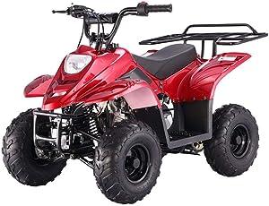 TAO TAO 110cc ATV Fully Automatic Four Wheelers ATV