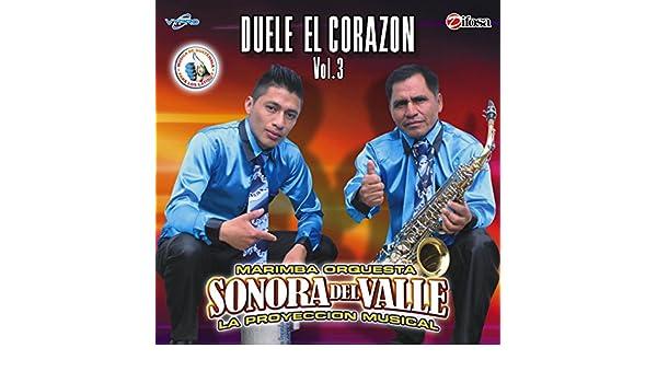Duele el Corazón Vol. 3. Música de Guatemala para los Latinos de ...