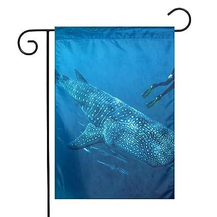 Amazon com: OLGCZM Diving Ocean Whale Shark Fish Home Flag,Weather