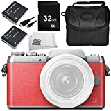 Panasonic Lumix DMC-GF8 Digital Camera (Body) (Pink) 8PC Accessory Bundle – Includes 2 Replacement DMC-BLH7 Batteries + AC/DC Rapid Home and Travel Charger + 32GB SD Memory Card + MORE