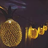 Metal Mesh 10 mini Pineapple String Light Linpote Battery Powered LED Fairy Light for Bedroom Wall Birthday Party Decoration Warm White