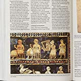 CSB Holy Land Illustrated Bible, British Tan