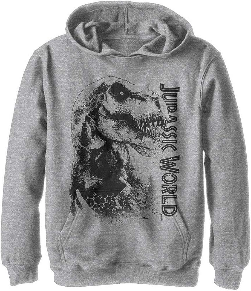 Jurassic Park Jurassic World Kids Fleece Hooded Camo Sweatshirt /& Sweatpants 2 Piece Activewear Set