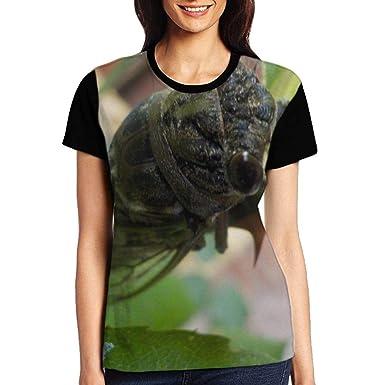 dd3b57cc Amazon.com: Cicada Lie On The Wall Art Women's Short Sleeve T-Shirt:  Clothing