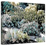 Art Wall Desert Botanical Garden Gallery Wrapped Canvas Art by Linda Parker 18 by 24-Inch offers