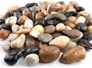 CJGQ Pebbles for Plants 7 lb Natural River Rocks for Garden Outdoor Aquariums Gravel 1-2 Inches