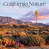 California Nature 2019 12 x 12 Inch Monthly Square Wall Calendar, USA United States of America Pacific West State Nature (Multilingual Edition)