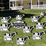 VictoryStore Yard Sign Outdoor Lawn Decorations: Birthday Yard Decoration, Holy Cow! Look Who Is 40, Set of 11 with Stakes