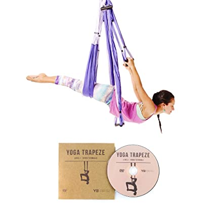 YOGABODY Yoga Trapeze [official] - Yoga Swing/Sling/Inversion Tool, Purple with Free DVD (Renewed)