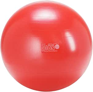 Gymnic Classic Plus Burst-Resistant Exercise Ball, Red (55 cm)