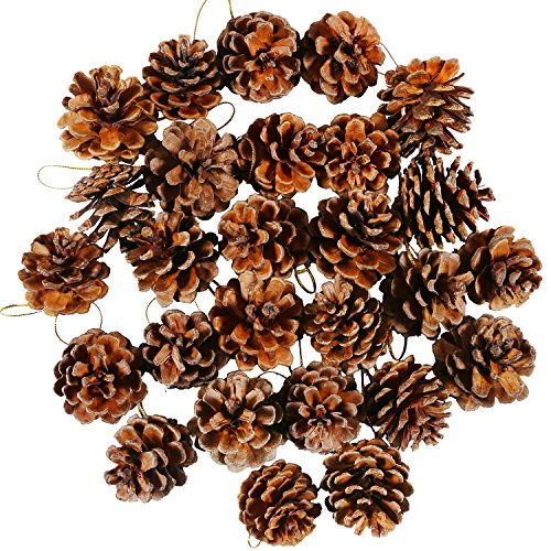 Coobey 27 Pieces Mini Pine Cones Christmas PineCones Natural Hanging Ornament 3-4cm Pine Cones Pendant With String for Christmas Gift Tag ()