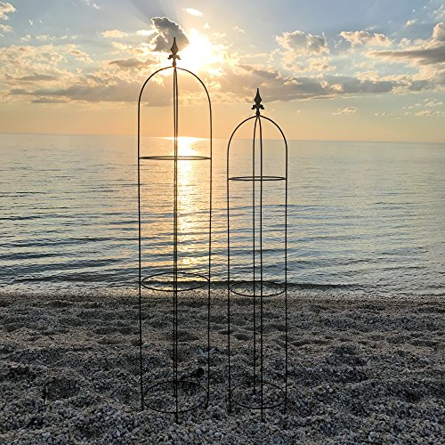 The French Country Style Garden Trellises, Set of 2, for Plants, Climbing Flowers and Vines, Rusty Heirloom Style Finish, Water and Weather Resistant, 5 Ft 11