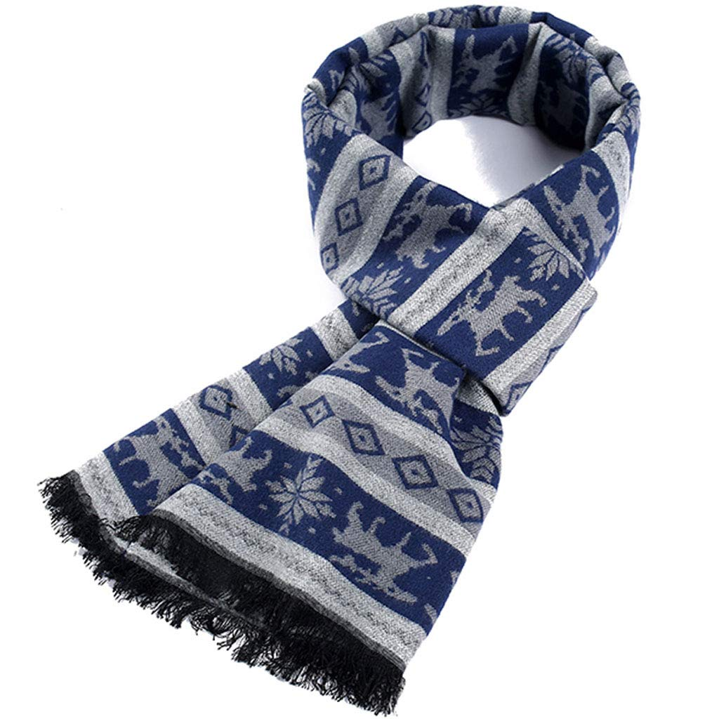 ENYI Winter Plaid Thick Scarf Simple Men's Youth Warm Scarves (Color : C) by ENYI