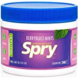 Spry Xylitol Mints, Natural Berry Blast, 240ct