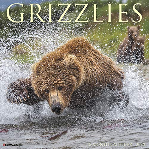 Grizzlies 2020 Wall Calendar ()