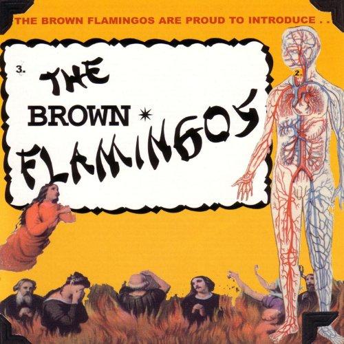 - The Brown Flamingos