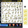 """Eazy How To Stretch Poster Exercise Workout BIG 28 x 20"""" Increase Flexibity , Lossen Muscle, Prevent Injury Home Gym Chart by Eazy How To"""