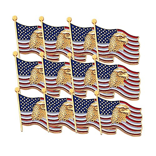 Awards and Gifts R Us 3/4 Inch American Flag with Eagle Lapel Pin - Package of 12, Poly ()