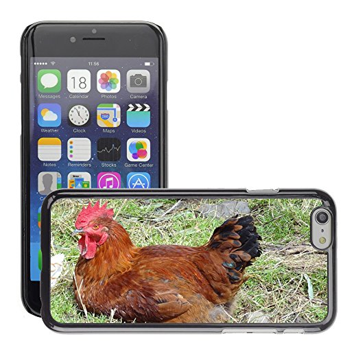 """Bild Hart Handy Schwarz Schutz Case Cover Schale Etui // M00135609 Schwanz Animal Farm // Apple iPhone 6 PLUS 5.5"""""""