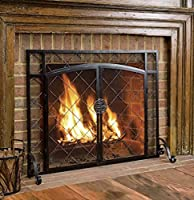 2-Door Celtic Knot Flat Steel Fire Scree...