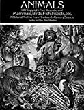 Contemporary artists and designers are finding the wood engraving one of the most highly desirable sources of illustration for many design purposes. Simple and bold or capable of the most exquisite effects of tonal gradation, this elegant black-an...