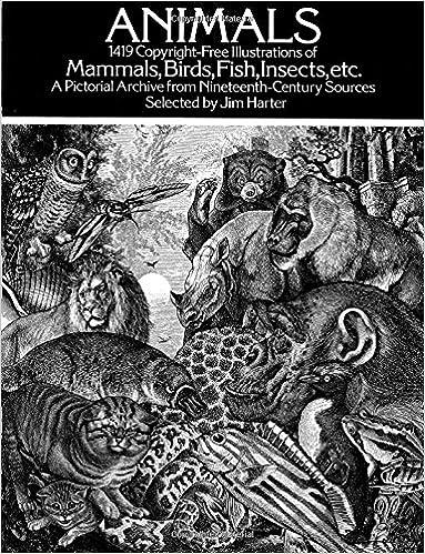 amazon animals 1 419 copyright free illustrations of mammals