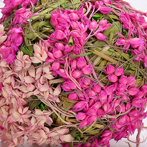 """Byher Natural Preserved Moss Hanging Ball Vase Bowl Filler for Garden, Wedding, Party Decoration (3.5""""(6 pack), Pink)"""